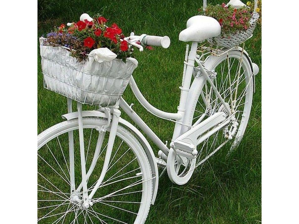 Фотозона «Белый Велосипед»